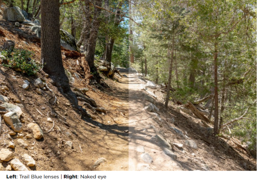 Trail blue comparison